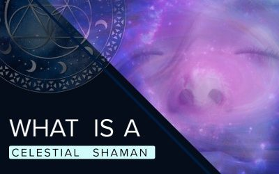 What is a Celestial Shaman?